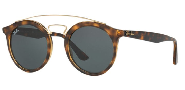 Ray Ban Gatsby Sunglasses RB4256 71071