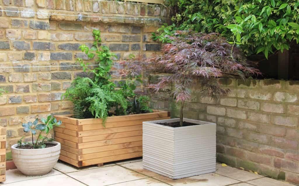 Top tips for a low maintenance garden - Design for Me on Low Maintenance:cyizg0Gje0G= Backyard Design  id=82270