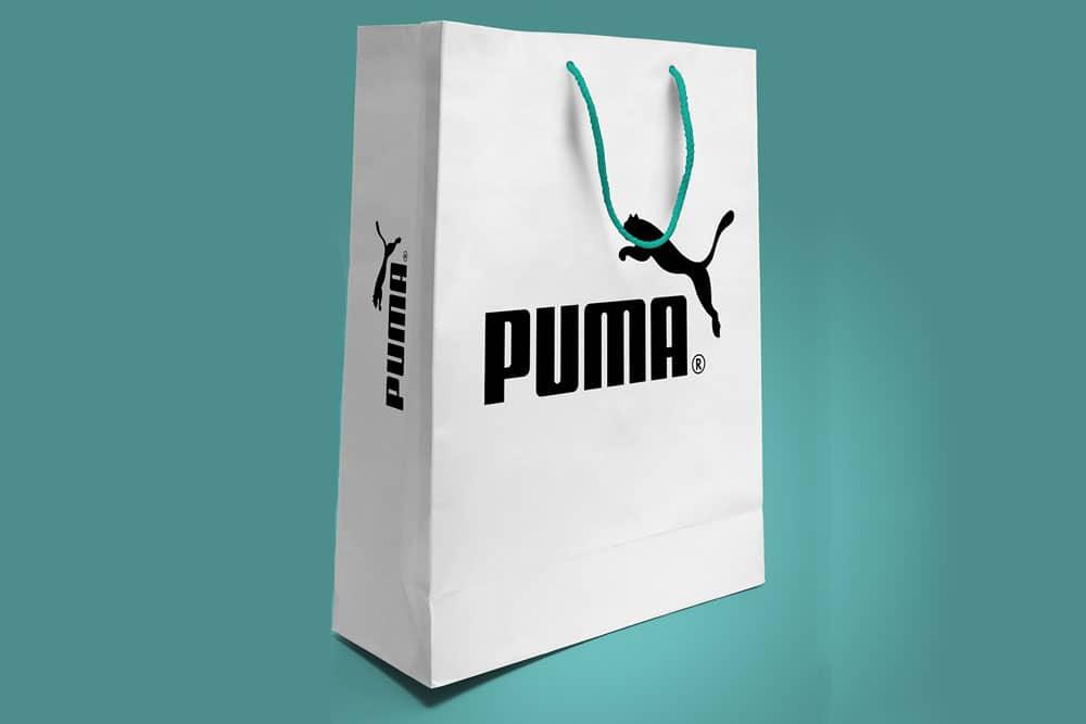 Download Download This Free Paper Bag Mockup In PSD - Designhooks