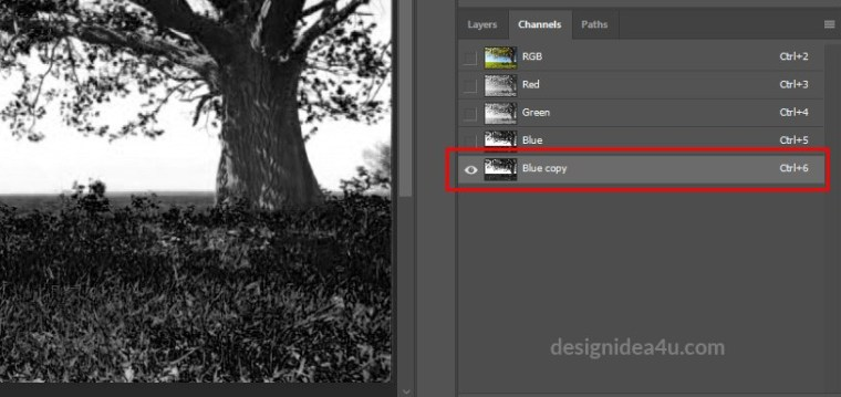FAST and EASY Way To Cut Out Tree In Photoshop
