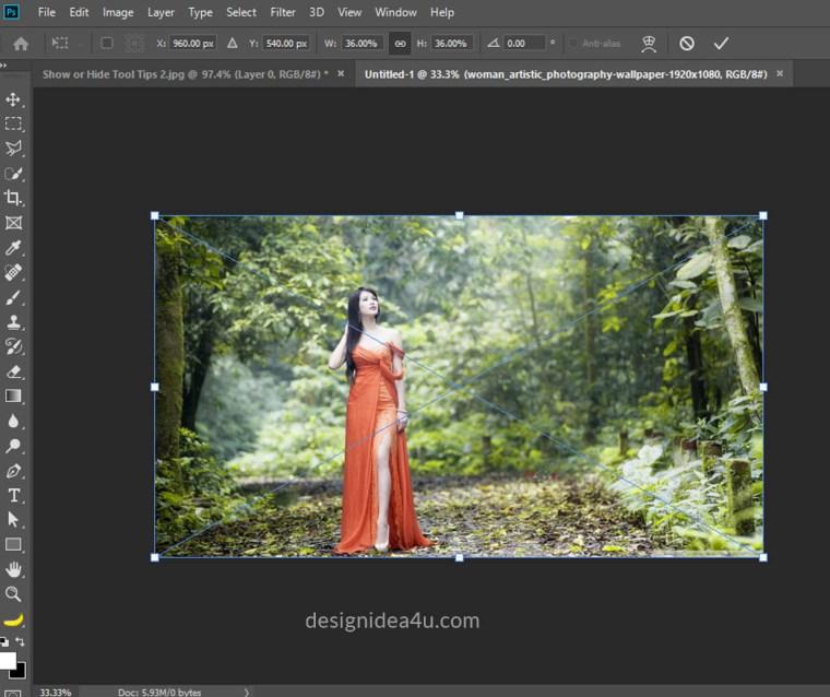 Skip Transform When Placing an Image
