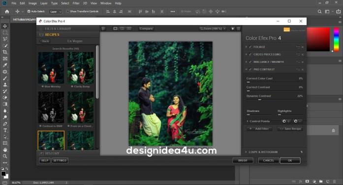 carencia neumático Moler  Nik Collection Free Download - Nik Collection Photoshop 2020