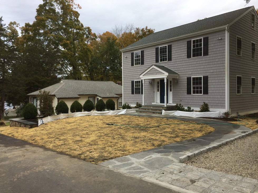 New Front Yard Landscape