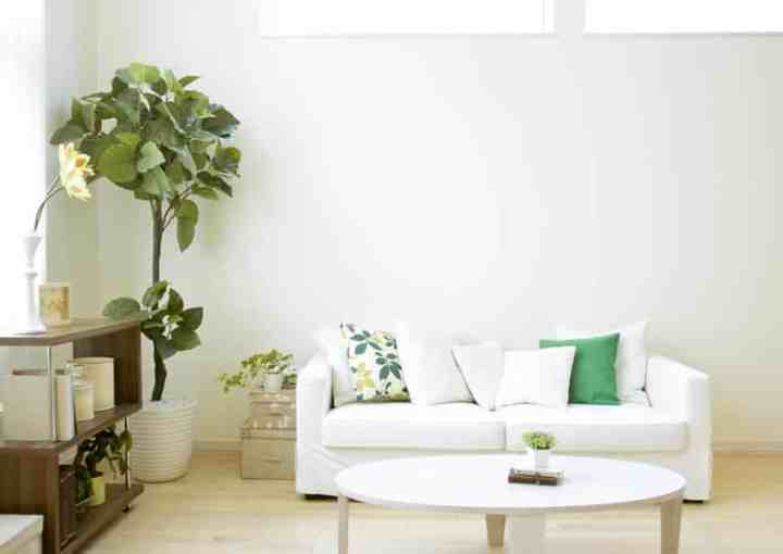 How To Clean Living Room Sofa | Aecagra.org