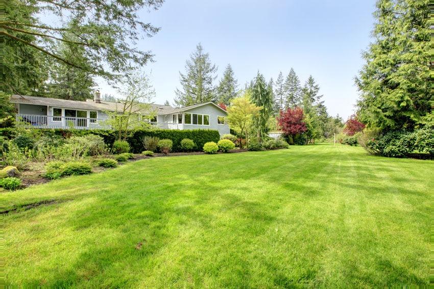129 Fence Designs & Ideas [Front & Backyard Styles ... on Open Backyard Ideas id=48925