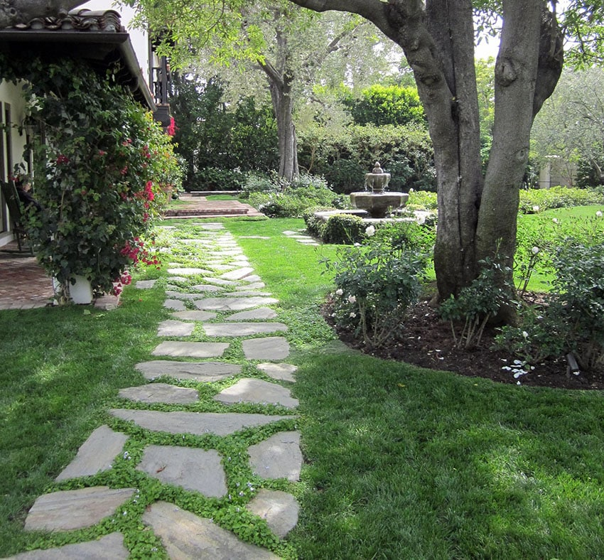 Walkway Ideas on a Budget (Garden & Backyard Designs ... on Side Yard Walkway Ideas id=16229