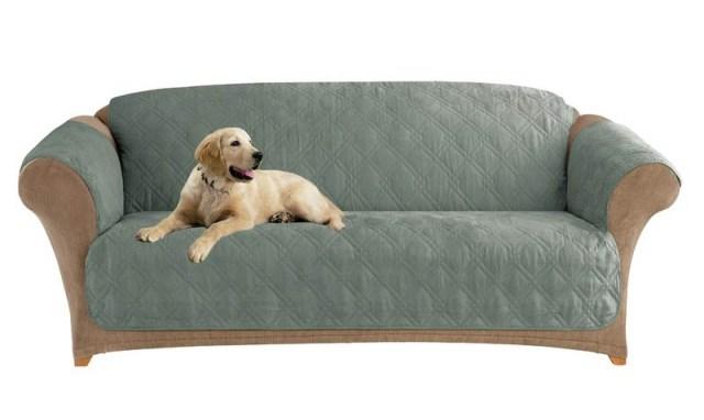 Köpekler için kanepe kılıfı