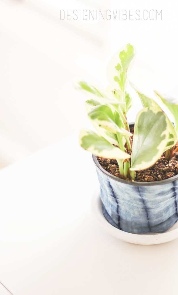 no-sew diy fabric planter shibori