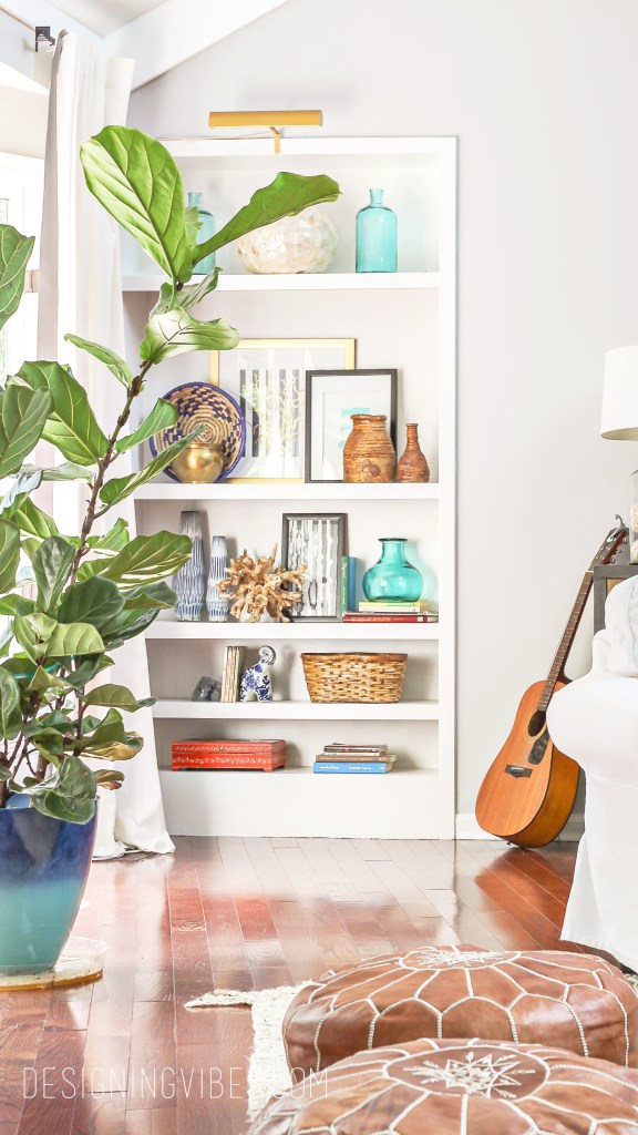 how to care for a fiddle leaf fig tree when you have a black thumb
