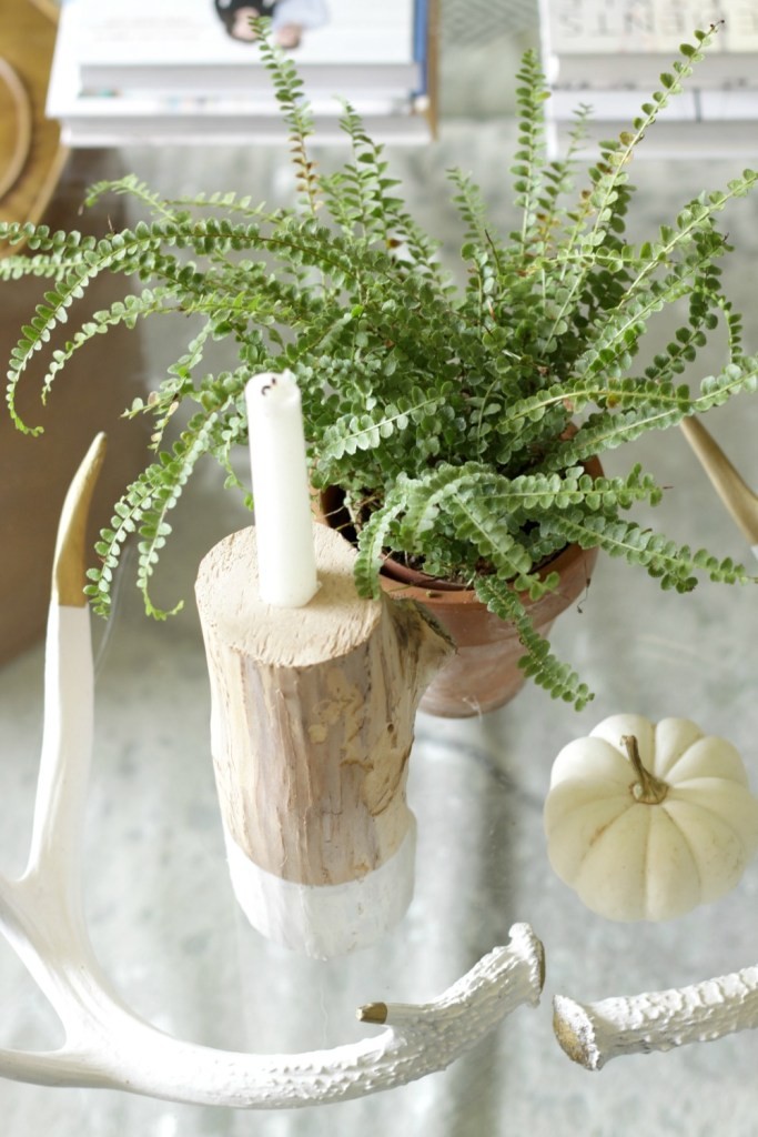fall coffee table decor styling