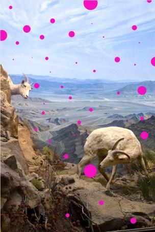Jason DeMarte // Utopic - Pink Placebo