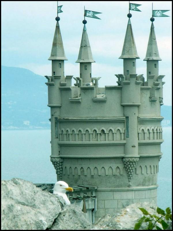 castle-nest