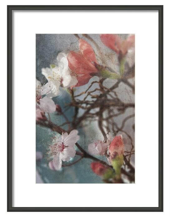 Original-Floral-Art-Prints-by-DueAlberi1