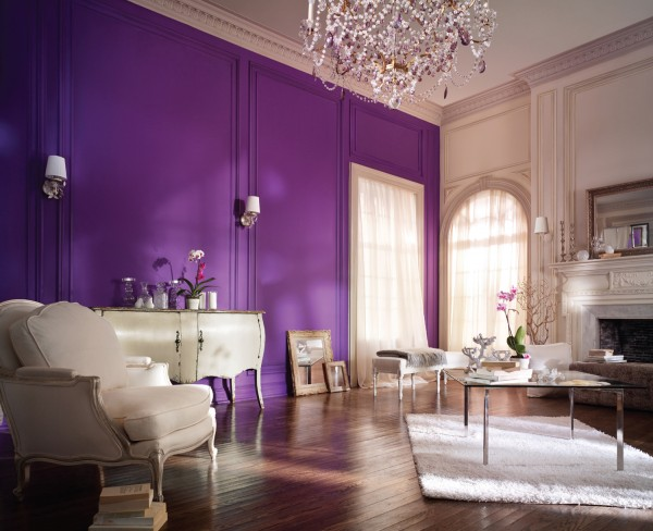 purple-accent-wall-stylish-living-room