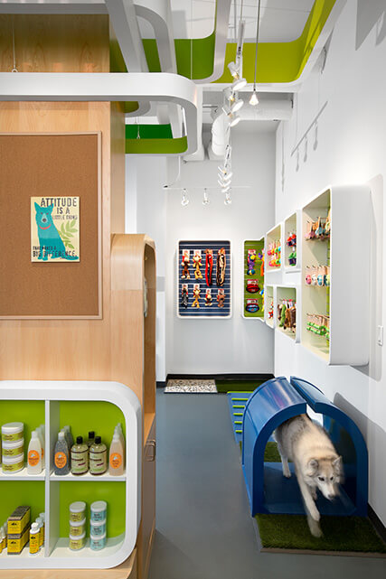 Fresh And Playful Pet Shop Design In Vancouver Interior