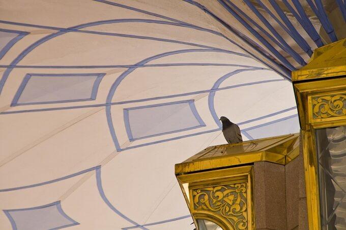 Elegant-column-detail