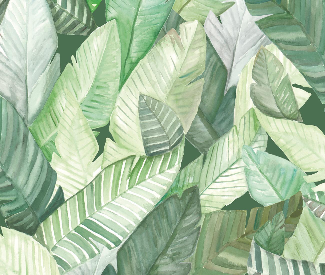 Coordonn Anima Banano Green Wallpaper