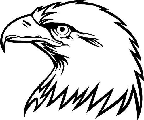 Download Bird Of Prey svg, Download Bird Of Prey svg for free 2019