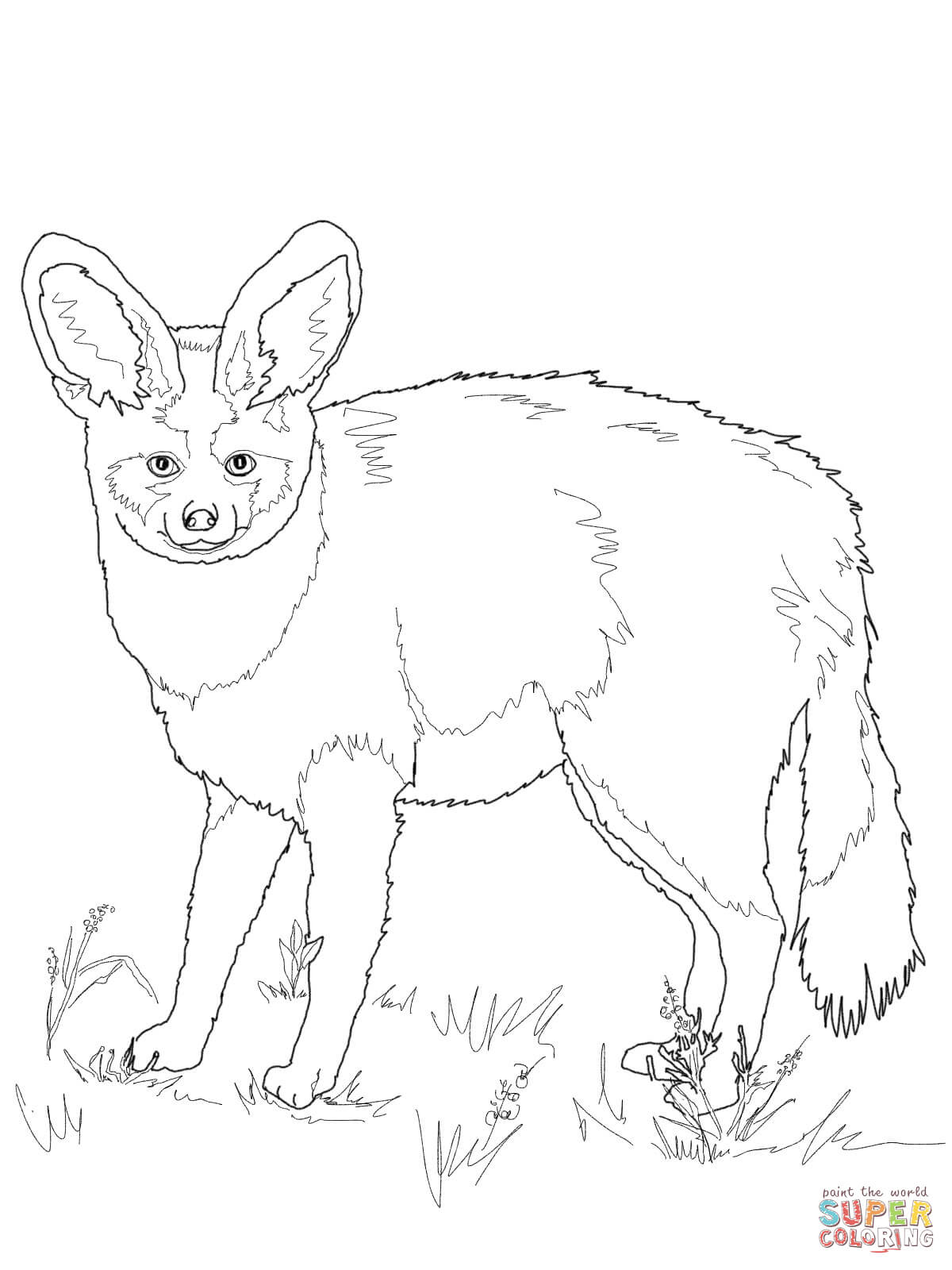 Download Bat Eared Fox Clipart For Free