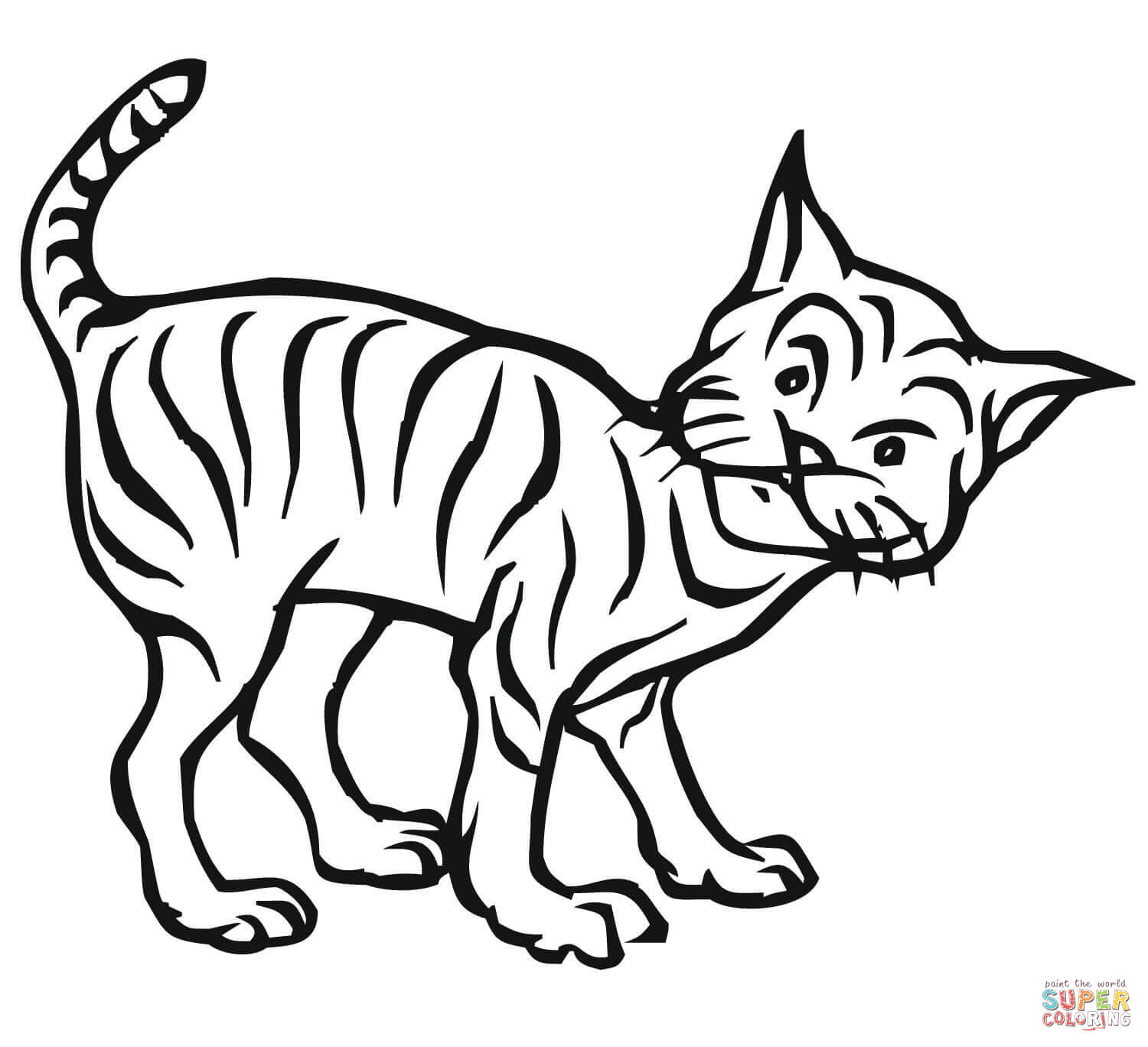 Bobcat Coloring Download Bobcat Coloring