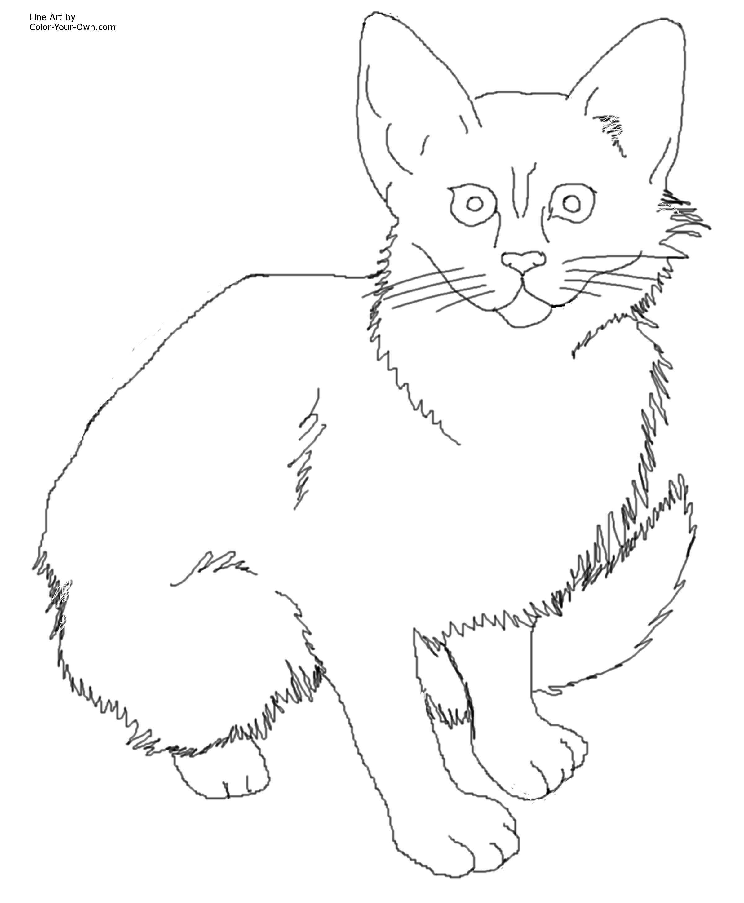 Calico Cat Coloring Download Calico Cat Coloring For Free
