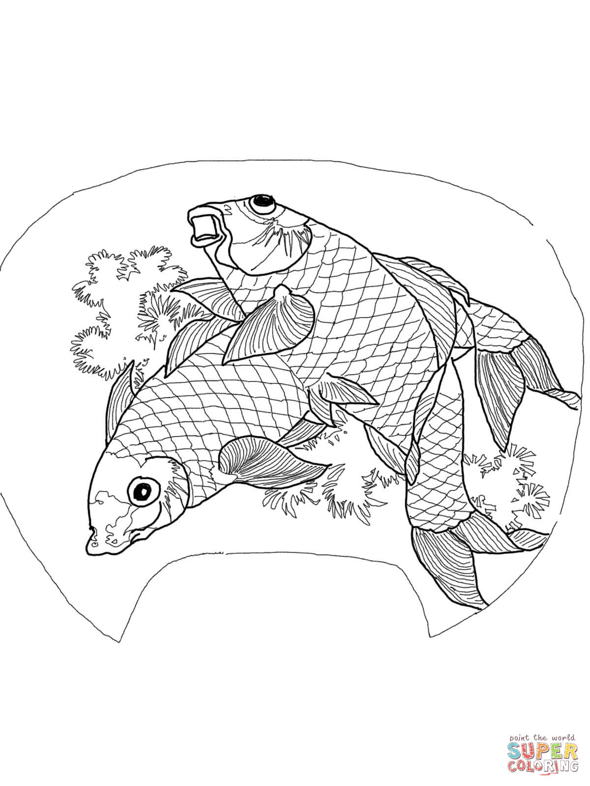 Koi Carp Coloring Download Koi Carp Coloring