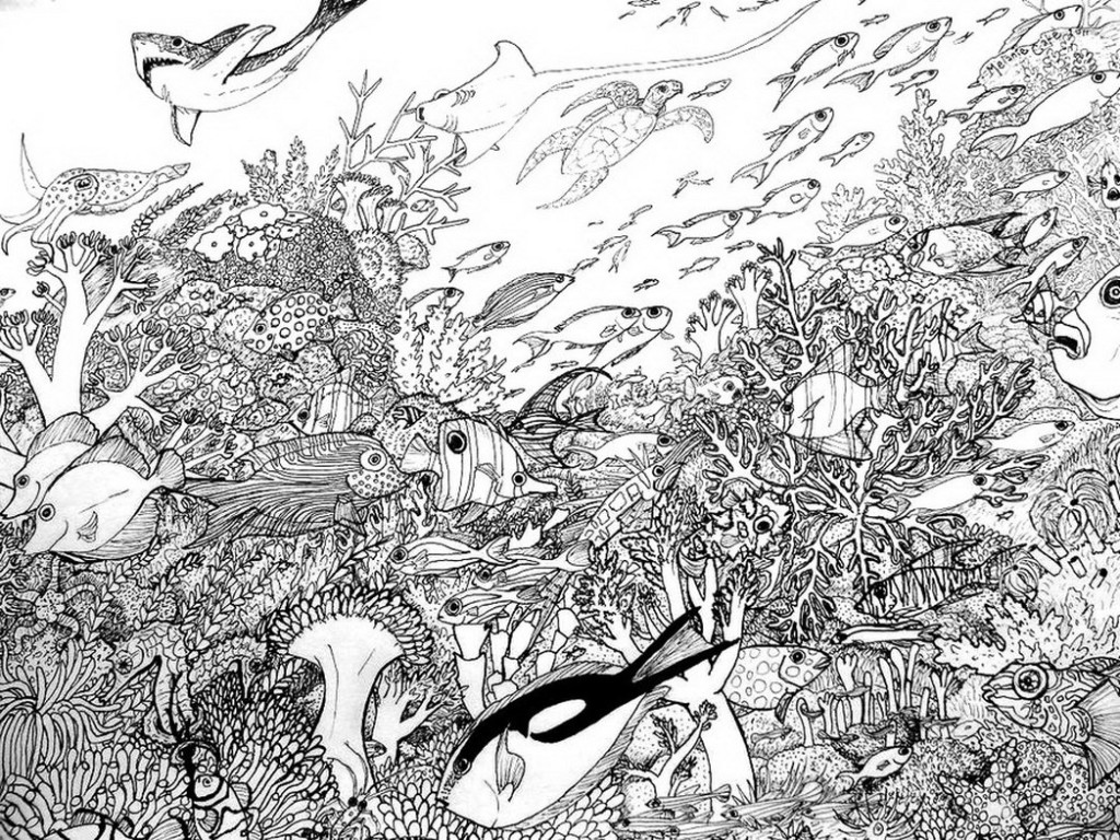 Coral Reef Coloring Download Coral Reef Coloring For Free