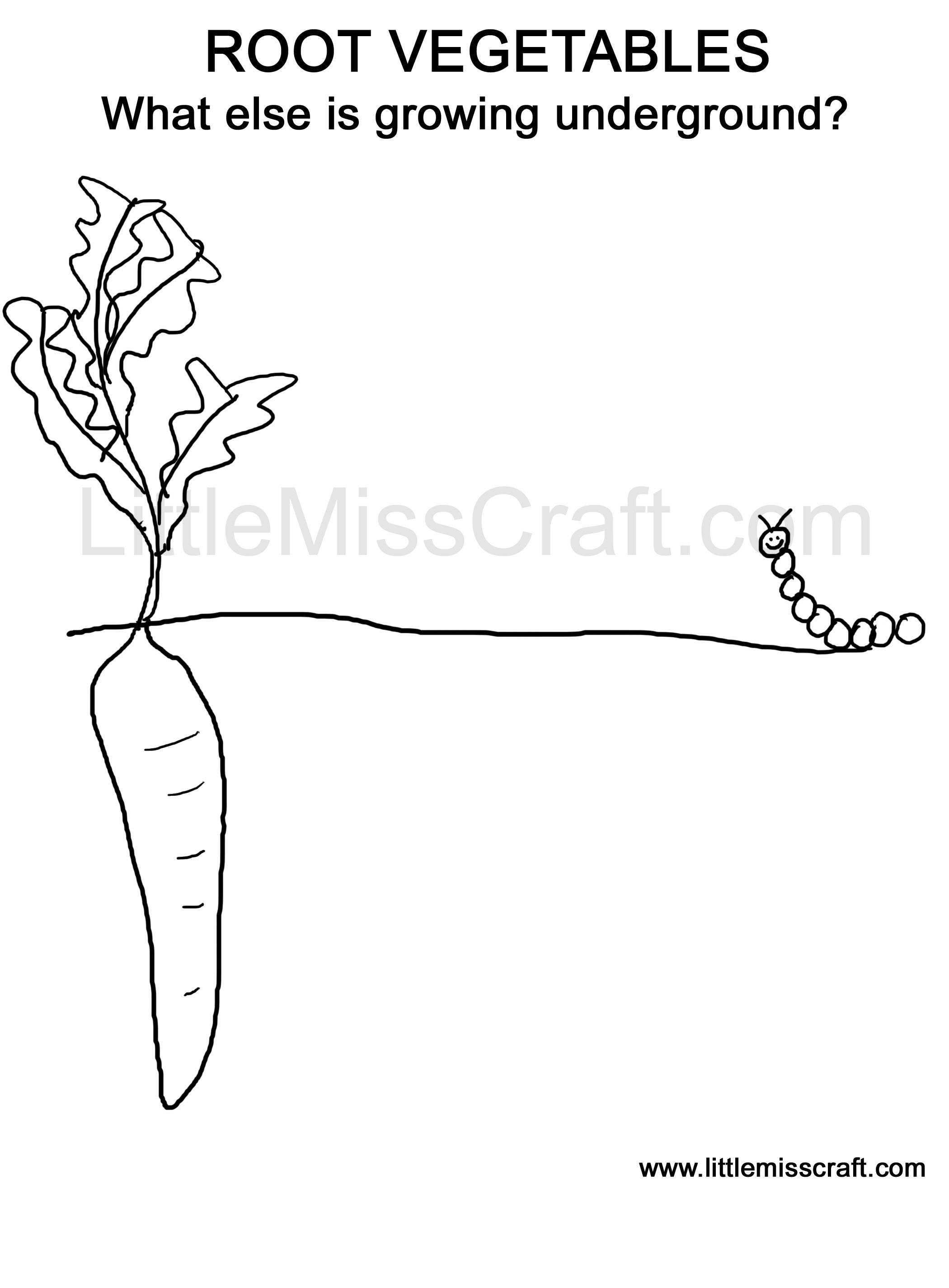 Roots Coloring Download Roots Coloring For Free