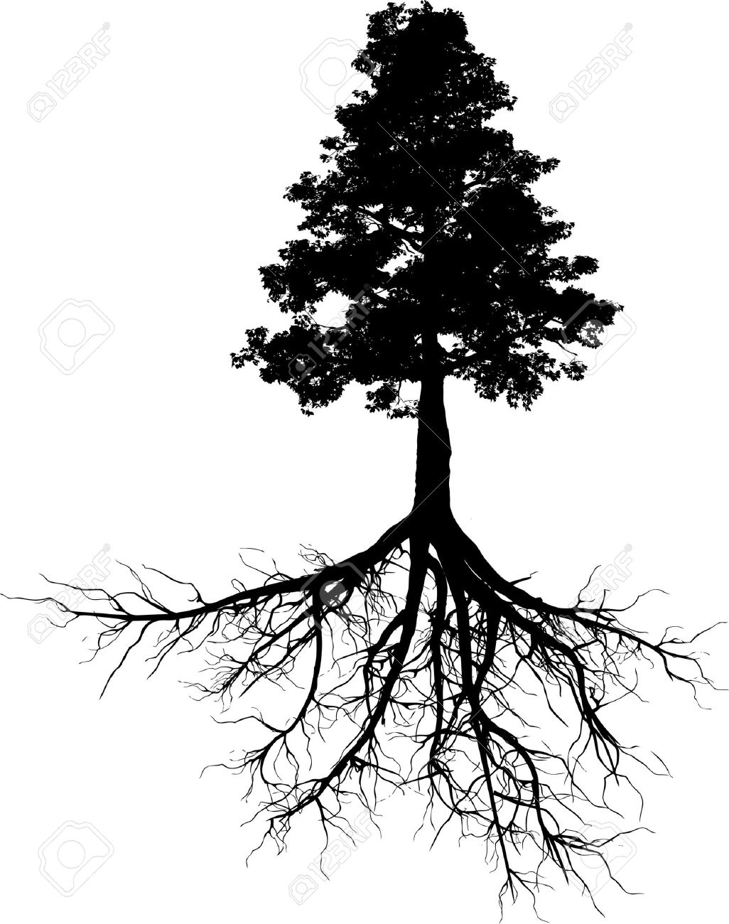 Tree Root Clipart Download Tree Root Clipart