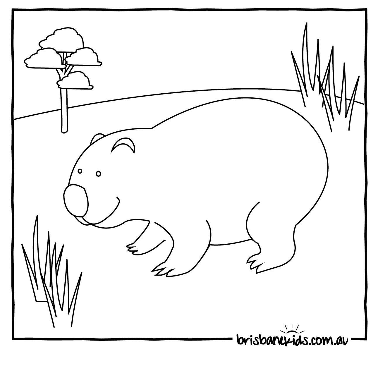 Wombat Coloring Download Wombat Coloring
