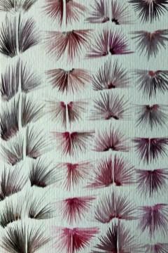 Design Luminy Jade-rousset-erasmus-2-13 Jade Rousset – École Massana – Barcelone Barcelone École Massana Séjours Erasmus Work in progress  Textile motif Massana Jade Rousset   Design Marseille Enseignement Luminy Master Licence DNAP+Design DNA+Design DNSEP+Design Beaux-arts