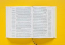 Design Luminy Alexandra-Midal-Design-Anthologie-6 Pour en finir avec le meuble d'artiste – Mart Stam – 1928 Histoire du design Références Textes  Weißenhof Rationalisation préfabrication Mart Stam
