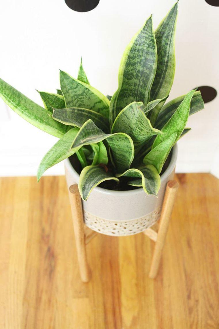 Porte Plante Et Support Pot De Fleur Intrieur De Style