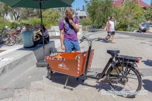 Electric Cago Bikes 3