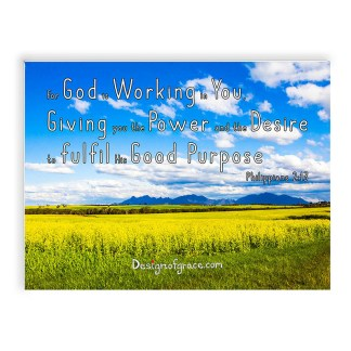 """Stirling ranges with blue skies, yellow canola fields Inspirational Mount with bible verse """"For God is Working in You, Giving you the Power and the Desire to fulfil His Good Purpose"""" Philippians 2:13"""