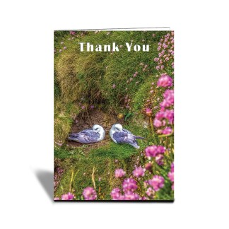 Thank You A Pair of birds on the cliff side Greeting Card