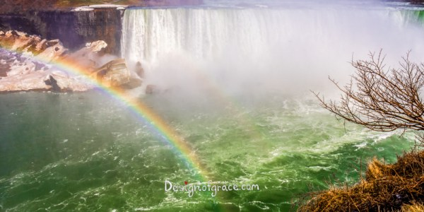 Niagara Falls Rainbow on the left with a tree on the right. Canada