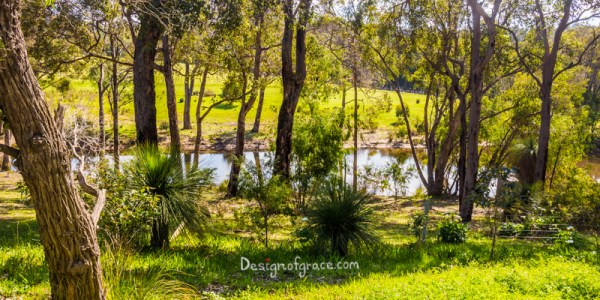 view from lot 80 of Meelup brook and green native plants, Eagle Bay, Western Australia