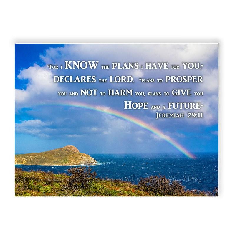 45_blowholes_rainbow_albany_8x6_d_txt