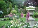 English Garden Design ISkN