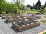 Raised Vegetable Garden Design HMDI