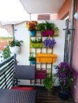 Small Balcony Garden Ideas Pictures