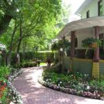 Balcony Garden Ideas Amazon
