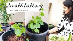 Closed Balcony Garden Ideas