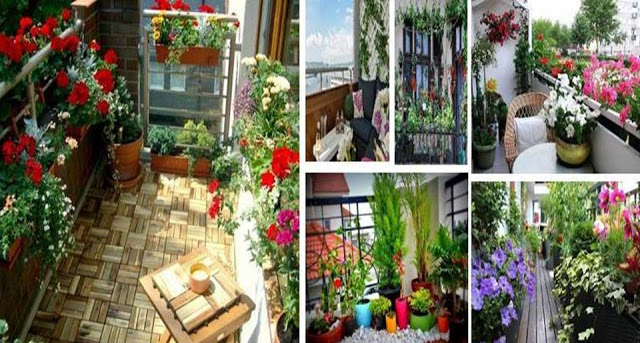 31+ Balcony Design Ideas India Images