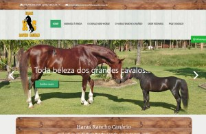 Criação de Site, Loja Virtual,E-commerce em Americana - SP