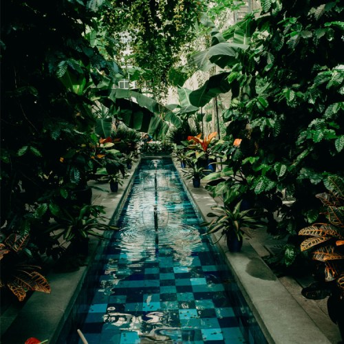 Washington DC Trip- Botanical Gardens