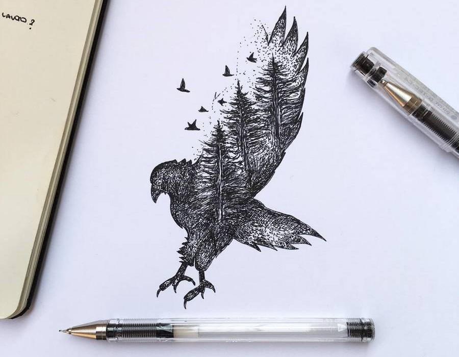Black Ink Illustrations By Alfred Basha Design