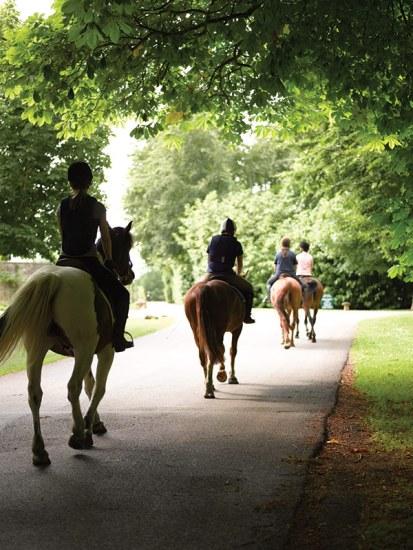 Horses at Lucknam Park