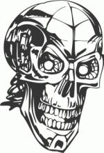 Human-Skull-Skeleton-DXF-File.png